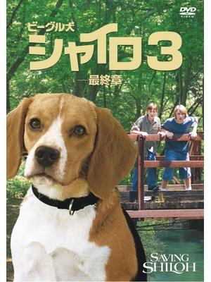 ビーグル犬 シャイロ3 -最終章-