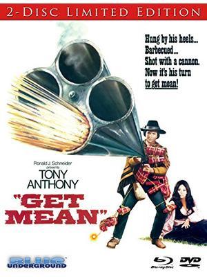 Get Mean(原題)