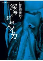 劇場版 NHKスペシャル 世界初撮影!深海の超巨大イカ