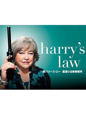 続ハリーズ・ロー 裏通り法律事務所 シーズン2