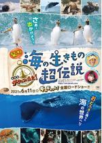 驚き!海の生きもの超伝説 劇場版ダーウィンが来た!