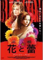 花と蕾 ヴァージン・プレイ