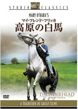 高原の白馬