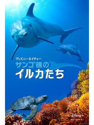 ディズニーネイチャー サンゴ礁のイルカたち