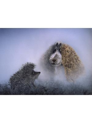 霧の中のハリネズミ/霧につつまれたハリネズミ
