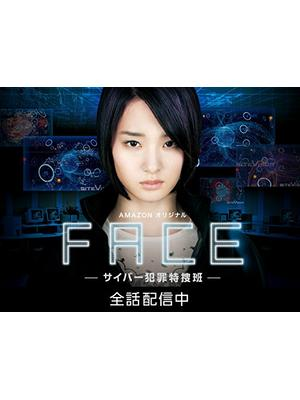 フェイス―サイバー犯罪特捜班―