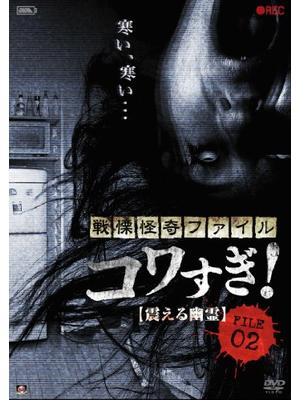 戦慄怪奇ファイル コワすぎ! FILE-02 震える幽霊