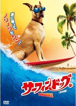 サーフィン ドッグ