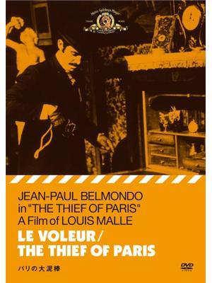 パリの大泥棒