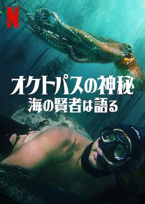 オクトパスの神秘: 海の賢者は語る - 映画情報・レビュー・評価・あらすじ・動画配信   Filmarks映画