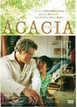 ACACIA-アカシア-