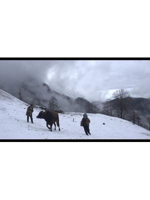 カランダールの雪