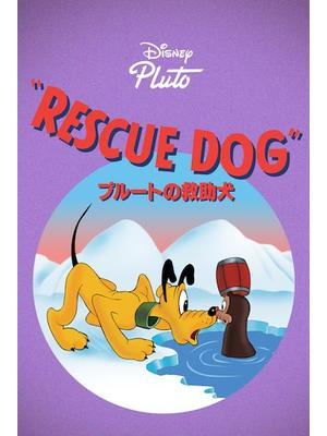 プルートの救助犬