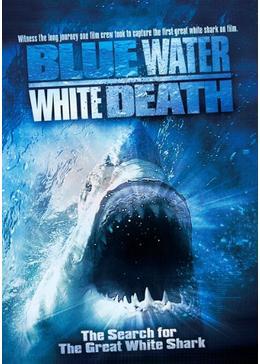 青い海と白い鮫