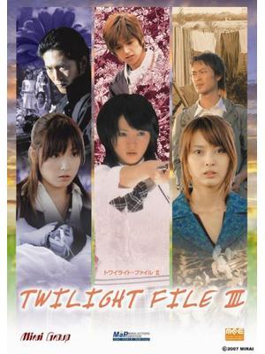 約束の地に咲く花/TWILIGHT FILE III